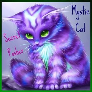 Congrats to today's Mystic Cats! SP Game